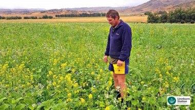 Regenerative-Agriculture